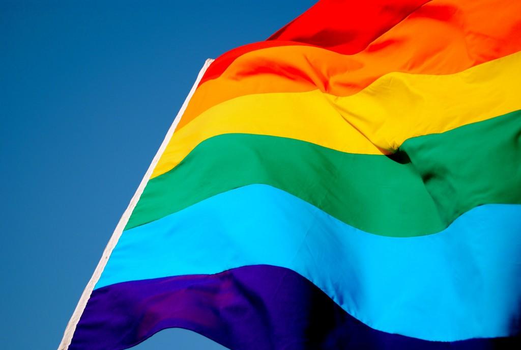 bandera-orgullo-2011
