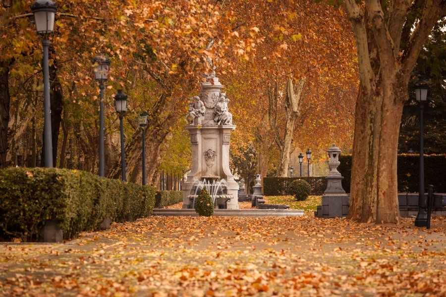 Romantic landscape of Madrid downtown at early winter